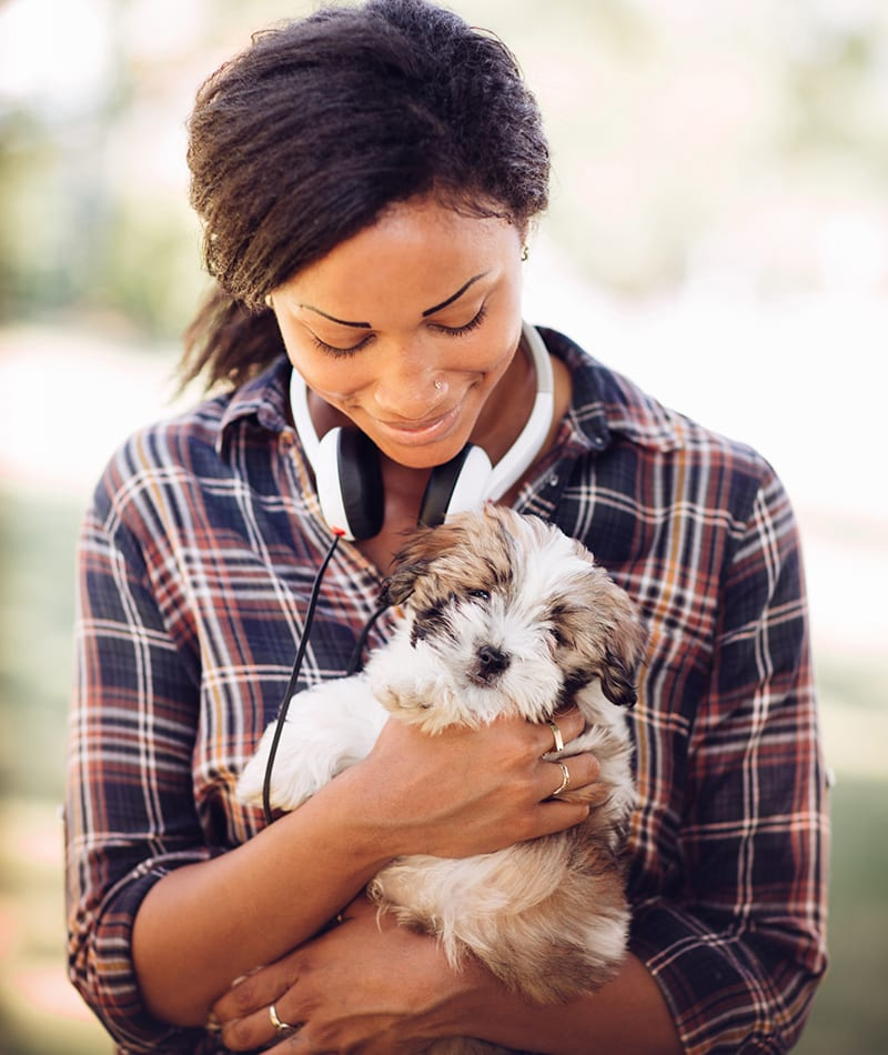 Veterinarian and Animal Hospital in Cottage Grove, MN